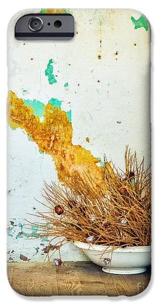 Vase On Wooden Floor IPhone 6s Case by Silvia Ganora