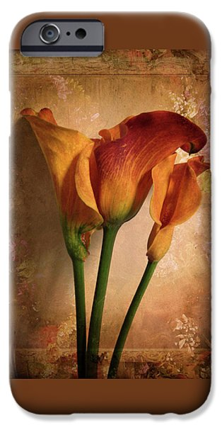 Vintage Calla Lily IPhone 6s Case