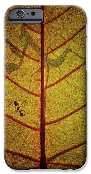 Ant iPhone 6s Case - Wayang by Dedy Gunawan