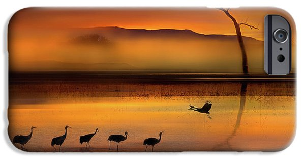 We Are Here Waiting For You IPhone 6s Case