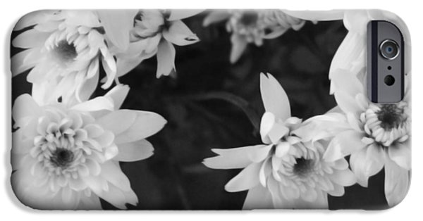 Daisy iPhone 6s Case - White Flowers- Black And White Photography by Linda Woods