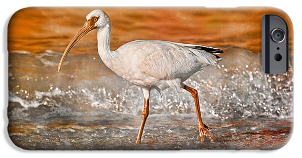 Ibis iPhone 6s Case - White Ibis Stroll by Betsy Knapp