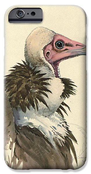 White Necked Vulture IPhone 6s Case