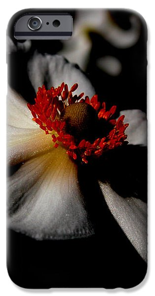 iPhone 6s Case - White Spring by Orphelia Aristal