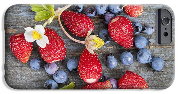 Blue Berry iPhone 6s Case - Wild Berries by Elena Elisseeva