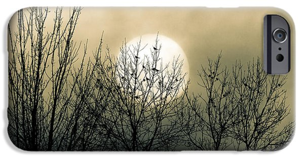 Moon iPhone 6s Case - Winter Into Spring by Bob Orsillo