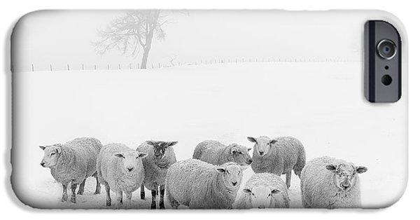 Winter Woollies IPhone 6s Case