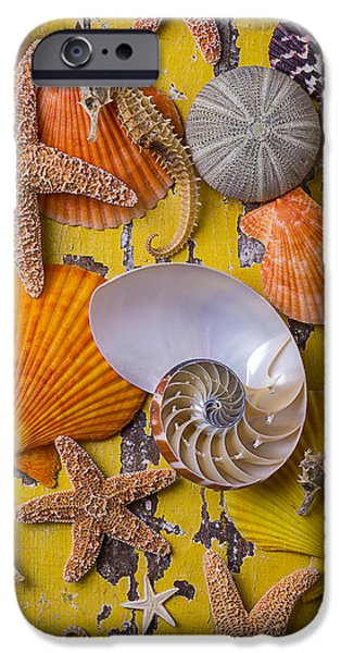 Wonderful Sea Life IPhone 6s Case by Garry Gay