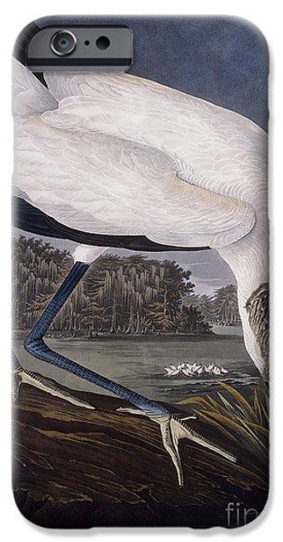 Ibis iPhone 6s Case - Wood Ibis by John James Audubon