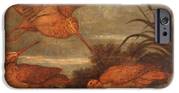 Woodcock At Dusk, Francis Barlow, 1626-1702 IPhone 6s Case by Litz Collection