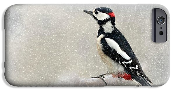 Woodpecker IPhone 6s Case by Heike Hultsch