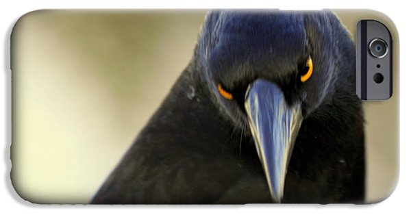 IPhone 6s Case featuring the photograph Yellow Eyes by Miroslava Jurcik