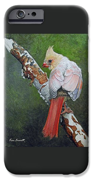 Young Cardinal  IPhone 6s Case by Ken Everett