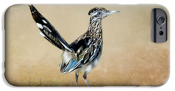 Greater Roadrunner IPhone 6s Case by Betty LaRue