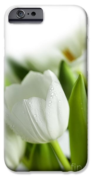 White Tulips IPhone 6s Case