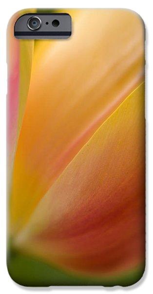 Tulip iPhone 6s Case - April Grace by Mike Reid