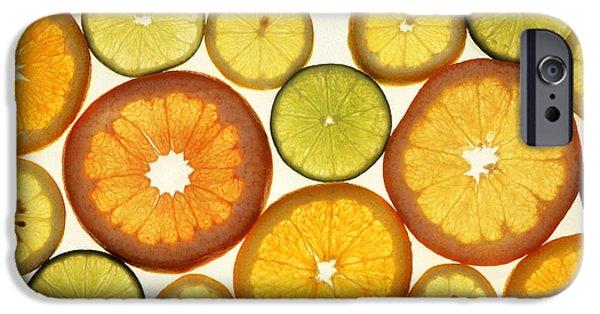Citrus Slices IPhone 6s Case by Photo Researchers