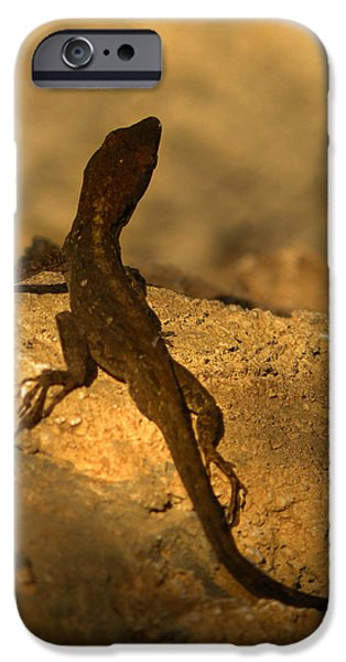 Newts iPhone 6s Case - Leapin' Lizards by Trish Tritz