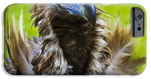 Monk Vulture 4 IPhone 6s Case by Heiko Koehrer-Wagner