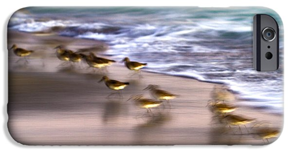 Sandpiper iPhone 6s Case - Playing Pipers by Betsy Knapp
