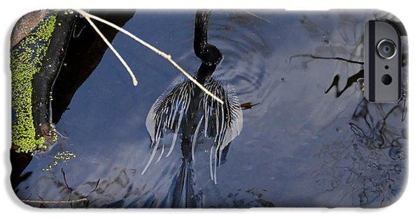 Swimming Bird IPhone 6s Case by David Lee Thompson