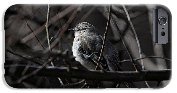 Mockingbird iPhone 6s Case - To Kill A Mockingbird by Lois Bryan