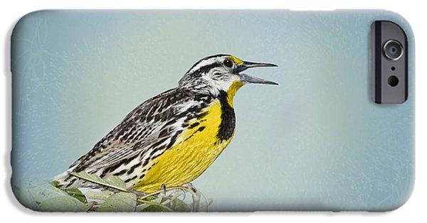 Western Meadowlark IPhone 6s Case by Betty LaRue