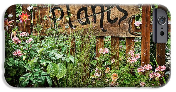 Garden iPhone 6s Case - Wooden Plant Sign In Flowers by Simon Bratt Photography LRPS