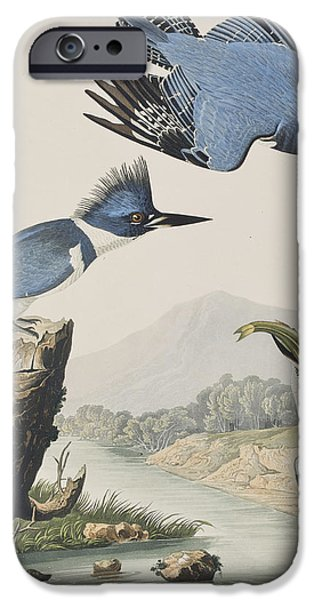 Belted Kingfisher IPhone 6s Case by John James Audubon
