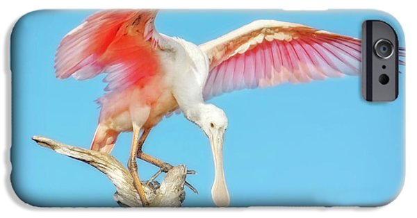 Spoonbill Cleared For Takeoff IPhone 6s Case