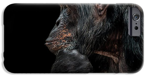 Chimpanzee iPhone 6s Case - Contemplation  by Paul Neville