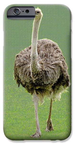 Emu IPhone 6s Case by Ellen Henneke
