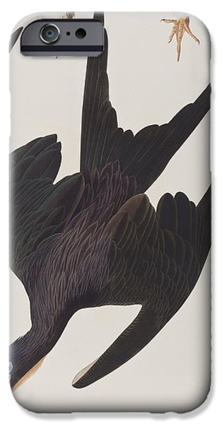 Frigate Pelican IPhone 6s Case by John James Audubon
