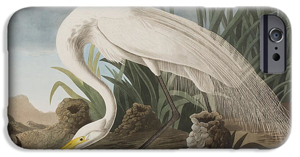 Great Egret IPhone 6s Case by John James Audubon