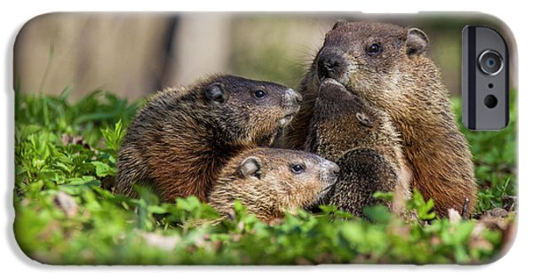 Happy Family IPhone 6s Case