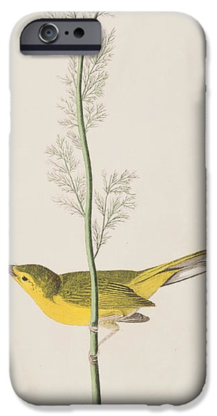 Hooded Warbler IPhone 6s Case by John James Audubon