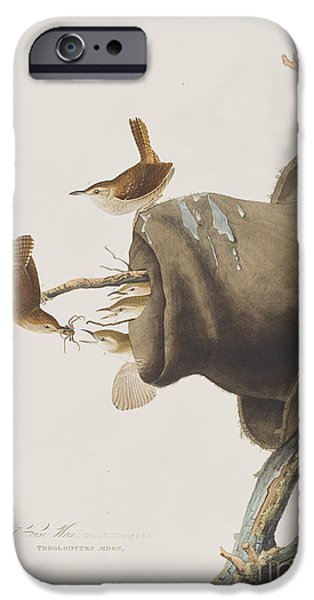 House Wren IPhone 6s Case by John James Audubon