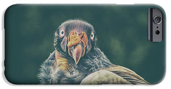 King Vulture IPhone 6s Case