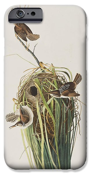 Marsh Wren  IPhone 6s Case by John James Audubon