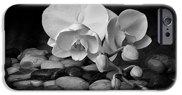 Orchid - Sensuous Virtue IPhone 6s Case by Tom Mc Nemar