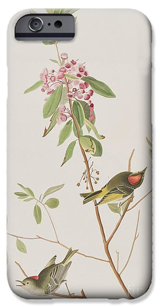 Ruby Crowned Wren IPhone 6s Case by John James Audubon