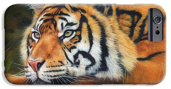 Sumatran Tiger  IPhone 6s Case