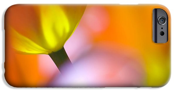 Tulip iPhone 6s Case - Tulips by Silke Magino