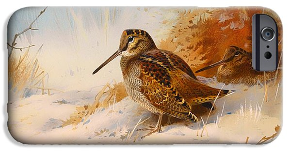 Winter Woodcock IPhone 6s Case by Mountain Dreams