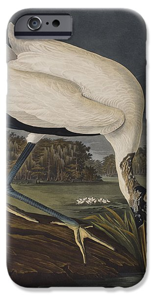 Wood Ibis IPhone 6s Case by John James Audubon