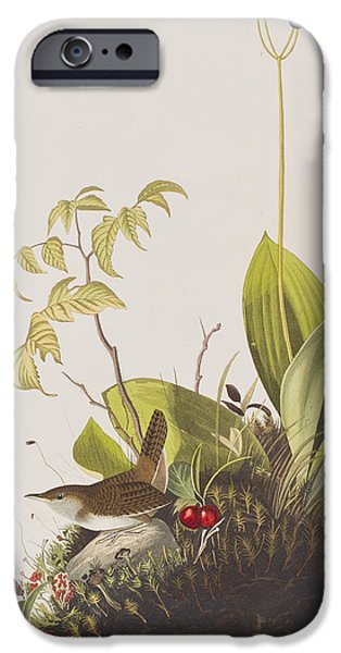 Wood Wren IPhone 6s Case by John James Audubon