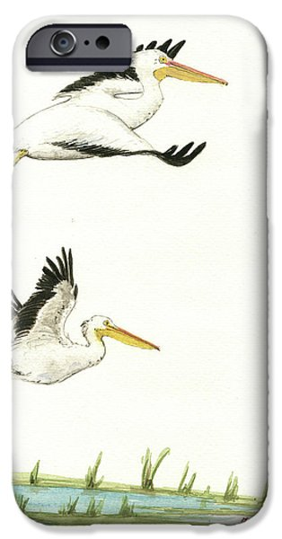 Pelican iPhone 6s Case - The Fox And The Pelicans by Juan Bosco