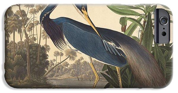 Ibis iPhone 6s Case - Louisiana Heron by Dreyer Wildlife Print Collections