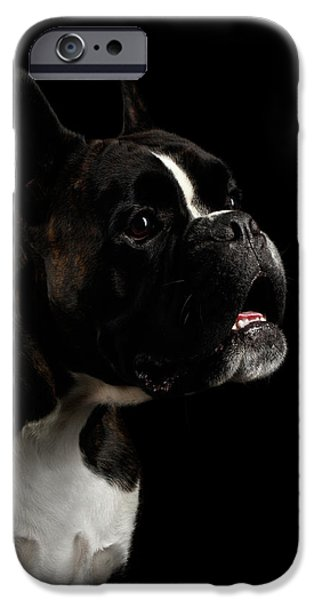 Purebred Boxer Dog Isolated On Black Background IPhone 6s Case