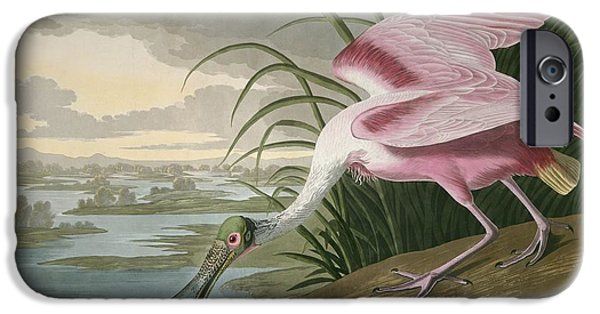 Roseate Spoonbill IPhone 6s Case by Rob Dreyer